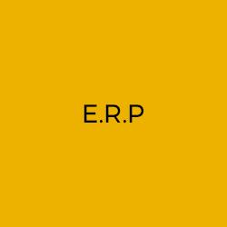 ERP by mala mať každá väčšia firma